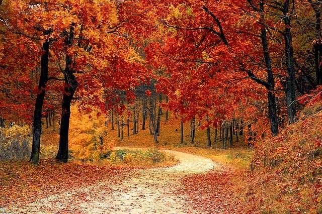 Dove andare in autunno