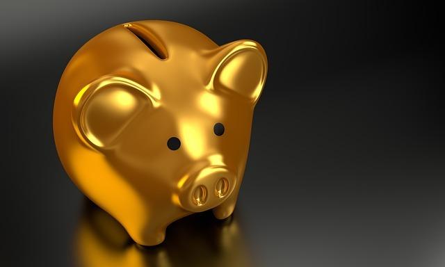 Salvadanaio per il risparmio online e gli acquisti scontati