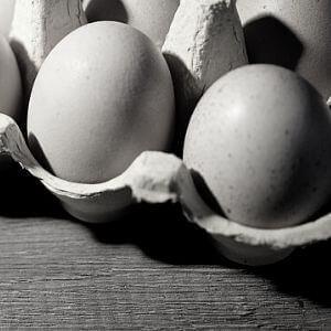Guadagnare con le scatole di uova